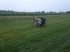 Playing Cards in the Corn Field
