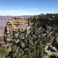 north_rim_grand_canyon_4569