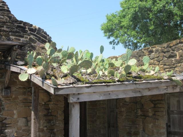 San Antonio Missions National Historical Park, San Antonio, TX31.jpg
