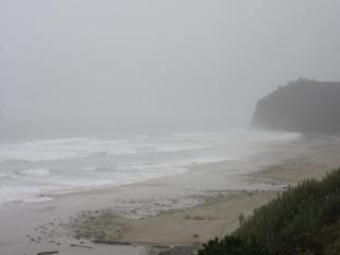 rainycoast