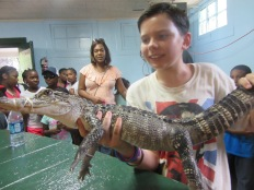 Arkansas Alligator Farm, Hot Springs, AR8