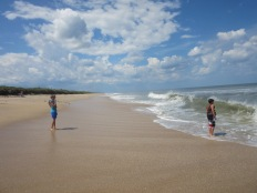 Canaveral National Seashore, Apollo Beach14