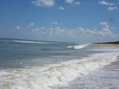 Canaveral National Seashore, Apollo Beach17