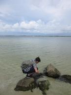Fort Pickens - Gulf Islands NS48