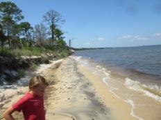 Naval Live Oak Preserve Gulf INS4