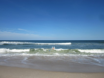 Playalinda Beach, Canaveral National Seashore18